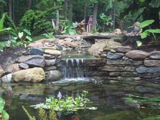 Whitmer waterfall 008